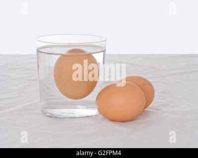 how to tell if an egg is bad water test