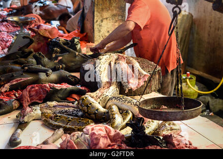 Meat of snake on Tomohon Traditional Market. North Sulawesi. Indonesia - Stock Photo