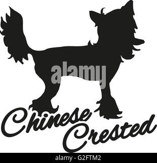 Chinese crested with breed name - Stock Photo