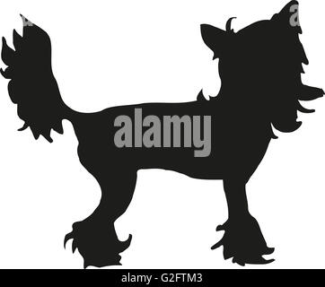 Chinese crested silhouette - Stock Photo