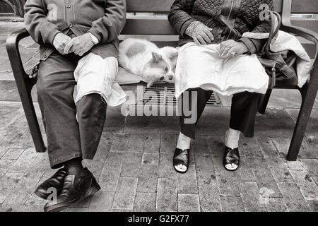 Elderly couple sitting on seat in park with pet dog stretched out between them - Stock Photo