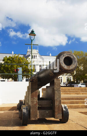 South African Museum, Company's Gardens, City Bowl, Cape Town, Western Cape, South Africa - Stock Photo