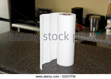 kitchen roll on counter - Stock Photo