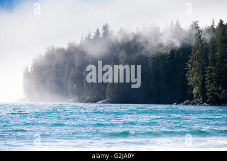 View of the Pacific Ocean and coastaline from China Beach in Juan de Fuca Provincal Park. Vancouver Island, BC, - Stock Photo