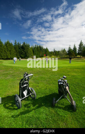 Golf carts frame golfers putting on a green Hidden Hills Golf Course on Northern Vancouver Island Port McNeill Northern - Stock Photo