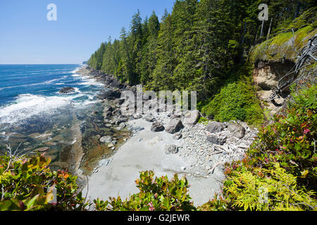 View from a cliff looking north along the West Coast Trail. Pacific Rim National Park Reserve, Vancouver Island, - Stock Photo