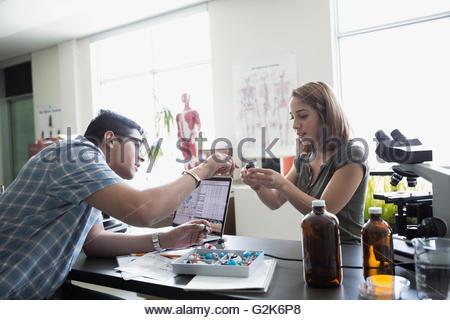 College students conducting scientific experiment in laboratory - Stock Photo