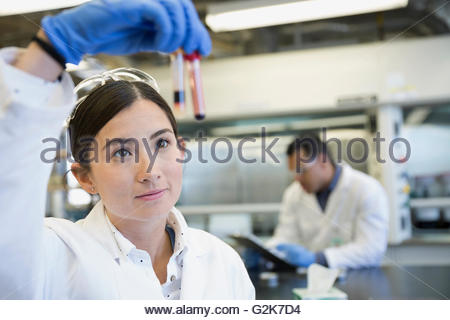 Scientist examining blood samples in laboratory - Stock Photo
