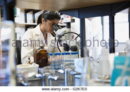 Scientist using microscope in laboratory - Stock Photo