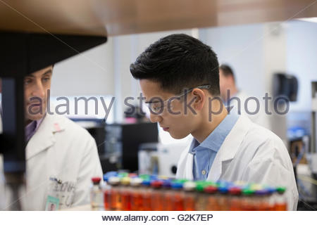 Scientists working in laboratory - Stock Photo