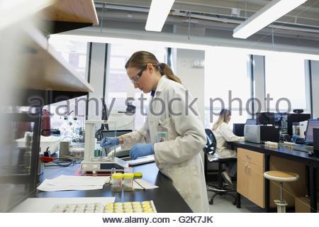 Scientist using equipment in laboratory - Stock Photo