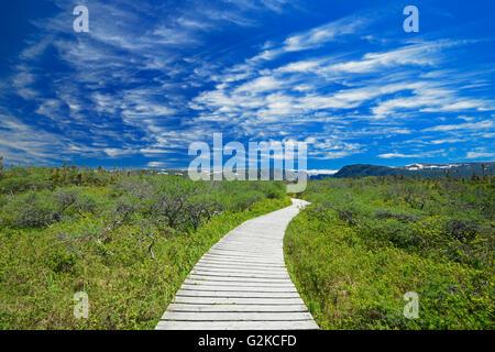Boardwalk at Western Brook Pond Gros Morne National Park Newfoundland & Labrador Canada - Stock Photo