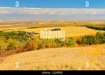 Farmland of 'Bolton Farm' Baljennie Saskatchewan Canada - Stock Photo