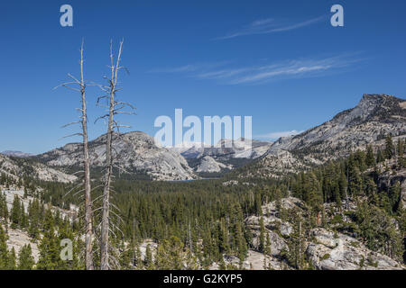 View from Olmsted point on the Tioga pass in Yosemite National Park, USA - Stock Photo