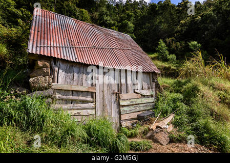Dilapidated Shed - Stock Photo
