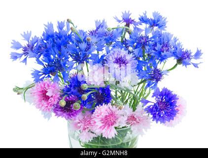 Blue cornflowers on white - Stock Photo