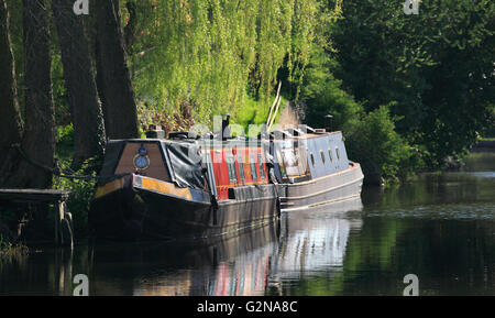 Narrowboats moored near Cookley on the Staffordshire and Worcestershire canal, Worcestershire, England, Europe - Stock Photo