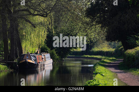 Moored canal barges on the Staffordshire and Worcestershire canal at Cookley, Worcestershire, England, Europe - Stock Photo