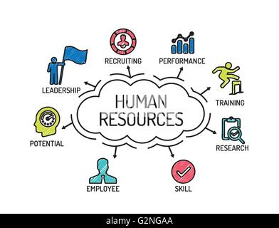 Human Resources. Chart with keywords and icons. Sketch - Stock Photo