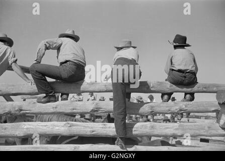Cowboys Sitting On Fence At A Ranch Rodeo Stock Photo