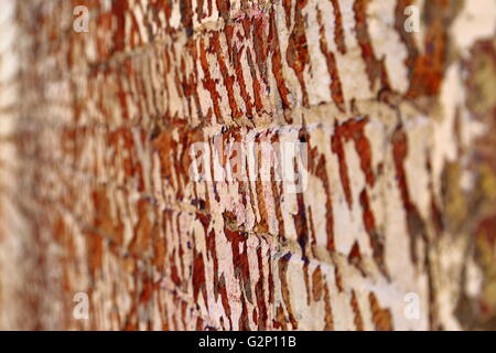 A weathered brick wall with peeling paint, in Battery Point, Hobart, Tasmania. - Stock Photo