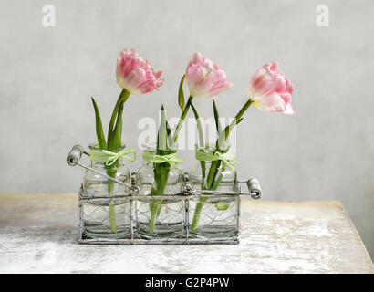 Three Beautiful Pastel Colored Pink Tulips In Glass Vases And Stock