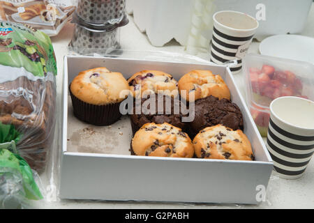 blueberry muffin and choc chip muffin in a box - Stock Photo