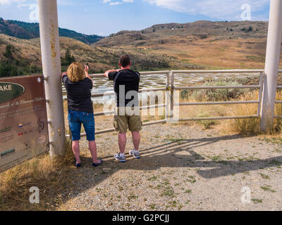 Spotted Lake is a saline endorheic alkali lake near Osoyoos, BC, Canada.  Water evaporates in summer leaving mineral - Stock Photo