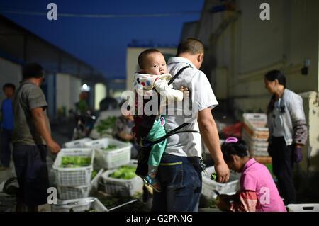 (160602) -- YINCHUAN, June 2, 2016 (Xinhua) -- Xie Dihuai, a farm worker from southwest China's Guizhou Province, - Stock Photo