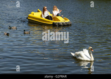The Groves, Chester, UK. 2nd June 2016. People enjoying the sunny weather on the River Dee at The Groves in Chester - Stock Photo