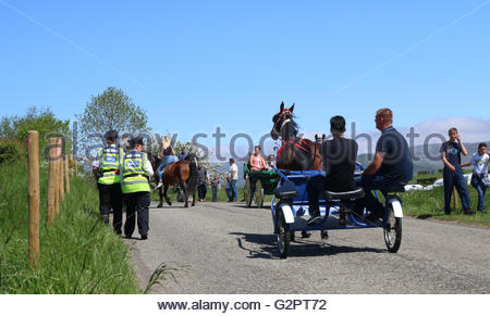 Appleby-in-Westmorland, Cumbria, UK. 2nd June 2016 A lovely warm and sunny day for the  start for the annual gathering - Stock Photo