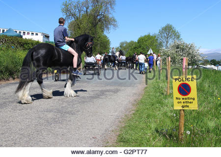 Appleby-in-Westmorland, Cumbria, UK. 2nd June 2016 The police presence is high at the annual gathering at the Appleby - Stock Photo