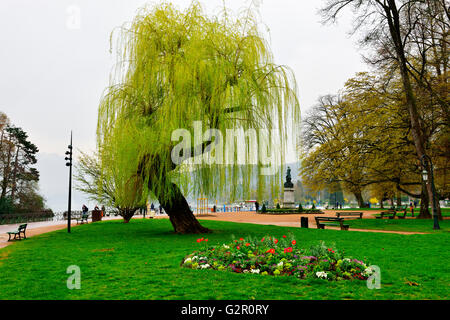 Weeping willow tree in park (by Les Jardins de l'Europe), Annecy, France - Stock Photo