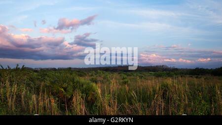 A peaceful calm suset over Florida Everglades sawgrass prairies - Stock Photo