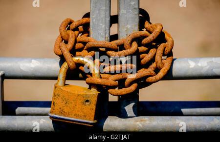 Rusty padlock and chain on metal gates - Stock Photo