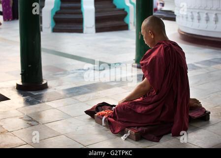 Meditating buddhist monk at Shwedagon Pagoda, Yangon, Myanmar - Stock Photo