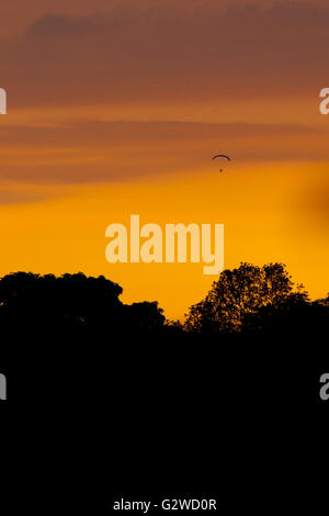 Flintshire, North Wales, UK. 3rd June 2016. UK Weather – A paraglider enjoying the warm evening and sunset - Stock Photo