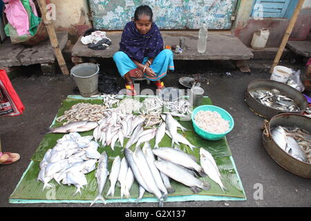 a woman selling fish at a street in kolkata,west bengal,where most of the people consume fish - Stock Photo