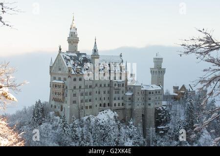 Neuschwanstein Castle in winter landscape - Stock Photo