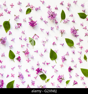 Floral pattern of fresh lilac flowers and leaves on white. Flat lay, top view. - Stock Photo