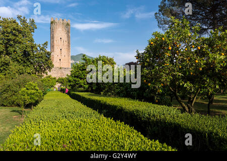 Gardens of ninfa cisterna di latina italy stock photo royalty free image 105087599 alamy - I giardini di alice latina lt ...