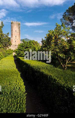 Giardino Di Ninfa Latina Italy Created By The Caetani