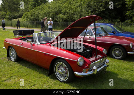 MG'S on display at the Classic Car show 2016 in Norman Park Bromley - Stock Photo