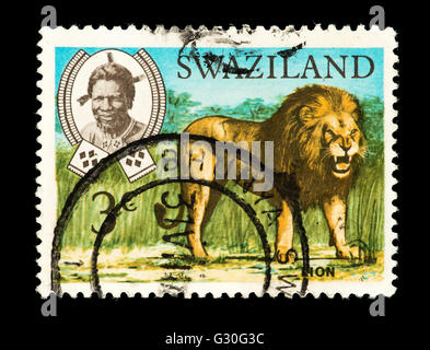 Postage stamp from Swaziland depicting a lion (Panthera leo) and King Sobhuza II - Stock Photo