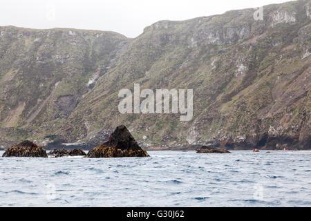 Zodiacs with expedition ship passengers at Antipodes Island, New Zealand sub-Antarctic - Stock Photo
