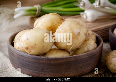Raw organic potatoes and spring green onion.  Yellow potatoes on rustic wooden table - Stock Photo