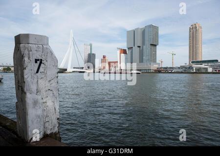 Rotterdam, Netherlands, view over the Nieuwe Maas in the neighborhood Kop van Zuid
