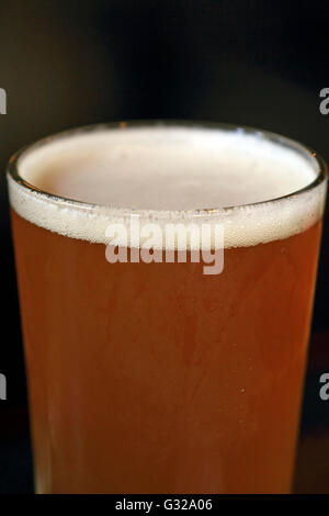 Cape May Brewing Company IPA beer. Cape May, New Jersey, USA - Stock Photo