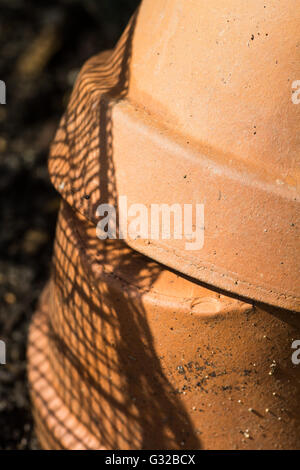 2 Terracotta Pots in the Garden - Stock Photo