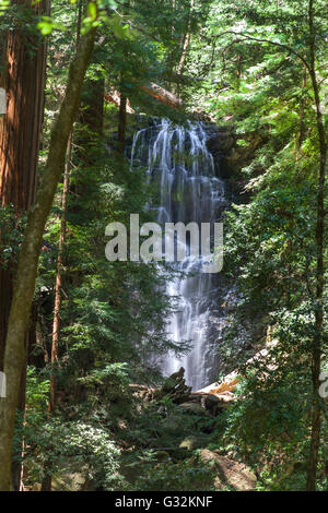 Berry Creek Falls located in Big Basin State Park - Stock Photo